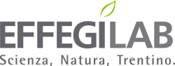 effegilab_logo_colour